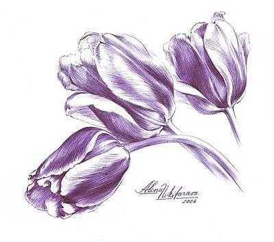 Drawing - Tulips by Alena Nikifarava