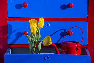 Paint Cans Photograph - Tulips And Watering Can  by Garry Gay