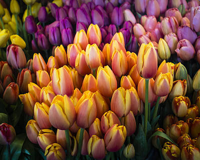 Tulips At The Market Art Print