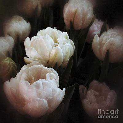 Photograph - Tulips by Chris Scroggins