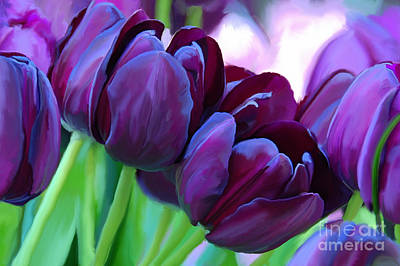 Tulips-dark-purple Art Print