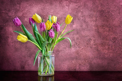 Photograph - Tulips by Darylann Leonard Photography