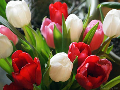Art Print featuring the photograph Tulips by Deborah Fay