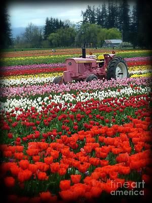 Photograph - Tulips Deserve Pink Tractor by Susan Garren