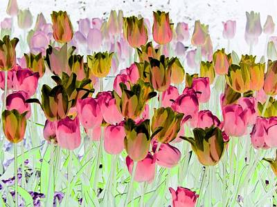 Photograph - Tulips - Field With Love - Photopower 1958 by Pamela Critchlow