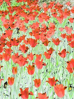 Photograph - Tulips - Field With Love - Photopower 1978 by Pamela Critchlow