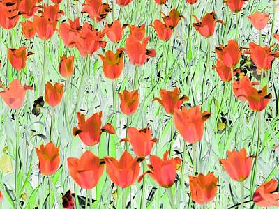 Photograph - Tulips - Field With Love - Photopower 1979 by Pamela Critchlow