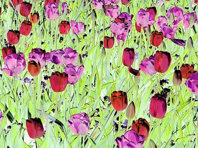 Photograph - Tulips - Field With Love - Photopower 1993 by Pamela Critchlow