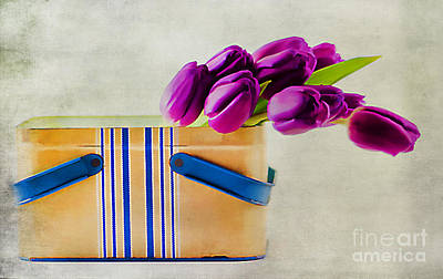Tulips For Mom Art Print by Darren Fisher