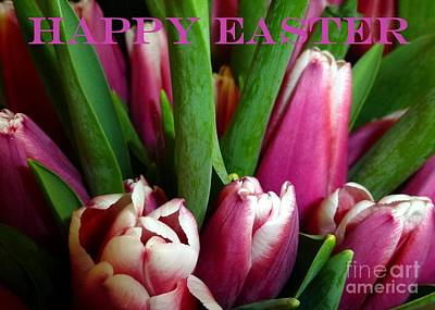 Photograph - Tulips Happy Easter Card by Barbie Corbett-Newmin