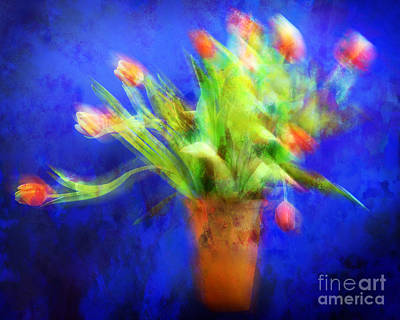 Photograph - Tulips In The Blue by Edmund Nagele