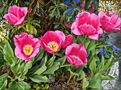 Tulips In The Park Art Print by Muriel Levison Goodwin