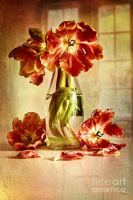 Photograph - Tulips In Vintage Milk Bottle  by Sandra Cunningham