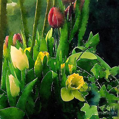 Urban Abstracts - Tulips Pansies and Daffodils in Spring Planter 2 by Nicola Andrews