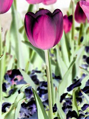 Photograph - Tulips - Perfect Love - Photopower 2026 by Pamela Critchlow