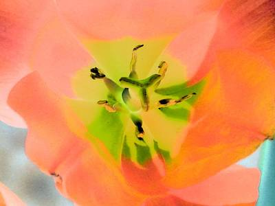 Photograph - Tulips - Perfect Love - Photopower 2052  by Pamela Critchlow