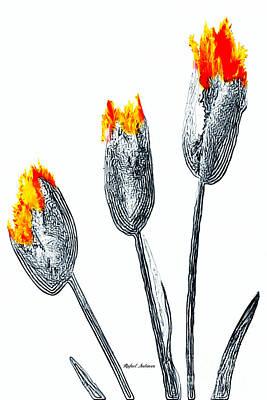 Digital Art - Tulips  by Rafael Salazar