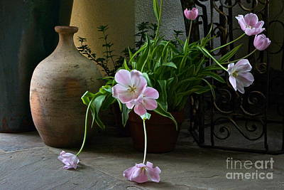 Photograph - Tulips With Earthenware Jar And Wrought Iron by Byron Varvarigos