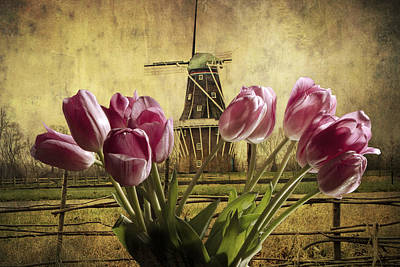 Photograph - Tulips With The Dezwaan Windmill In Holland Michigan No. 105 by Randall Nyhof