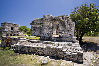 Plants Photograph - Tulum Mayan Ruins 3 by Mark Baker