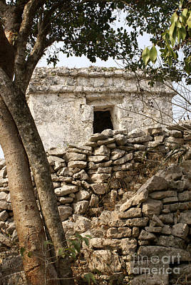 Photograph - Tulum Wall Mexico by John  Mitchell
