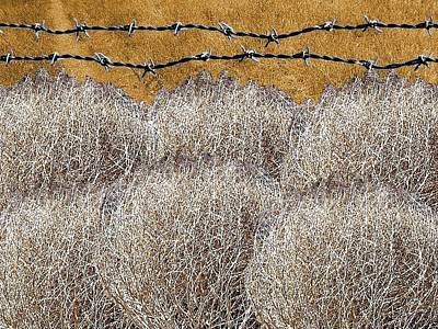 Tumbleweed And Barbed Wire Art Print by Suzanne Powers