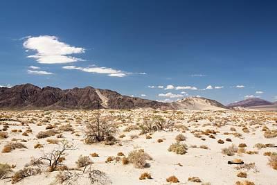 Tumbleweed Growing In The Mojave Desert Art Print