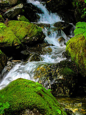 Photograph - Tumbling Stream by Robert Bales
