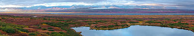 Tundra Landscape, Denali National Park Art Print by Panoramic Images