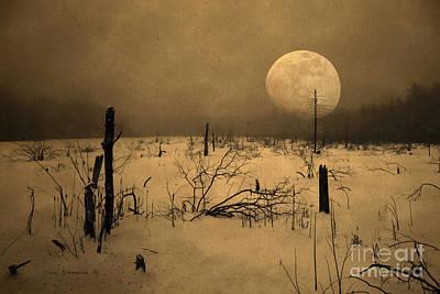 Photograph - Tundra Moon by John Stephens