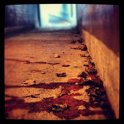 Desert Photograph - #tunnel #blood #stain #stains #stained by Jill Battaglia