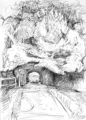 Country Schools Drawing - Tunnel Connecting Meadows by Maxine Cameron