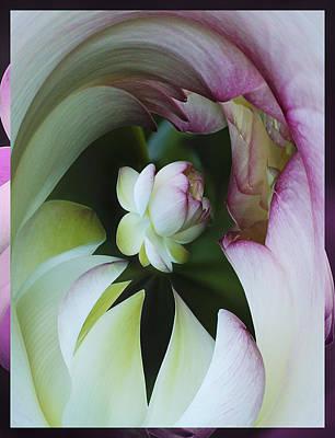 Tunnel Of Lotus Art Print by Jean Noren