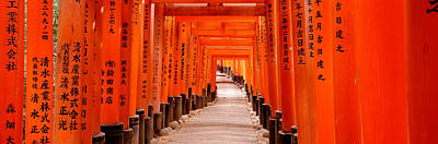 In A Row Photograph - Tunnel Of Torii Gates, Fushimi Inari by Panoramic Images