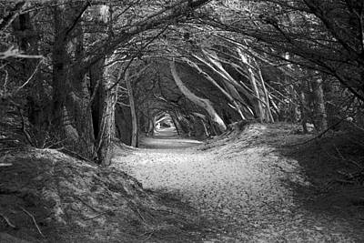 Tunnel To The Dunes In Black Art Print