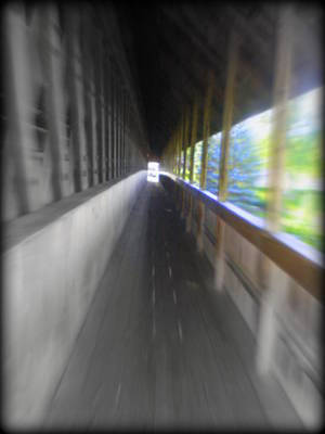 Michigan Frankenmuth Photograph - Tunnel Vision by Bill Noonan