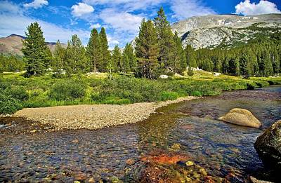 Photograph - Tuolumne Meadows by Joe Urbz