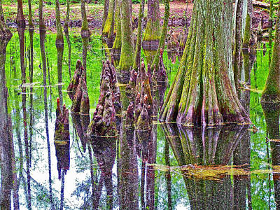 Tupelo/cypress Swamp Reflection At Mile 122 Of Natchez Trace Parkway-mississippi Print by Ruth Hager