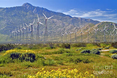 Photograph - Turbine Wind Farm San Gorgonio Pass Palm Springs Ca  by David Zanzinger