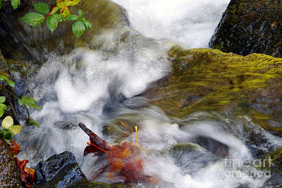 Photograph - Turbulent Waters by Sharon Talson