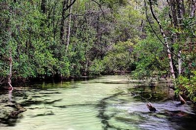 Photograph - Turkey Creek Niceville by JC Findley