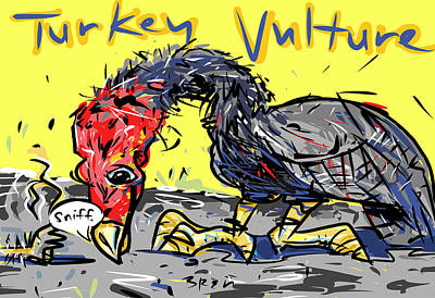 Buzzard Drawing - Turkey Vulture by Brett LaGue