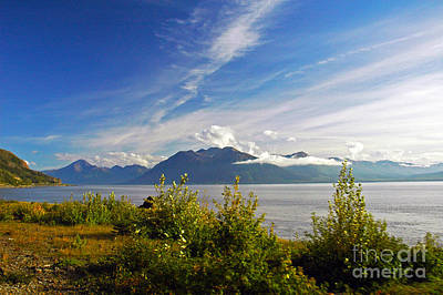 Photograph - Turnagain Arm Ak by Cindy Murphy - NightVisions