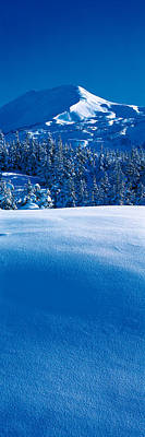Country Snow Photograph - Turnagain Pass Kenai Peninsula Ak Usa by Panoramic Images