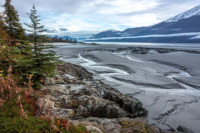 Art Print featuring the photograph Turnagain Tide Flats by Tim Newton