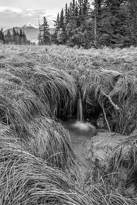 Photograph - Turnagain Tidefalls by Tim Newton