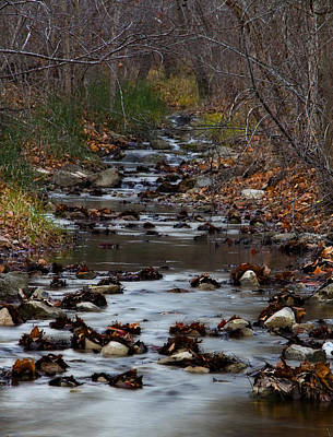 Photograph - Turner Falls Stream by Ricky Barnard