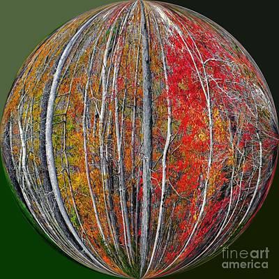 Turning Leaves Art Print by Scott Cameron