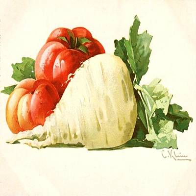 Painting - Turnip And Tomato by Florene Welebny
