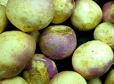 Photograph - Turnips by Robert Meyers-Lussier